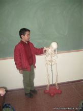 Sistema Osteoartromuscular 47