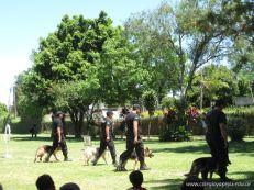 Encuentro de Familias 2010 320