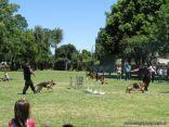 Encuentro de Familias 2010 350