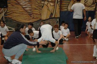 Muestra de Educacion Fisica 275