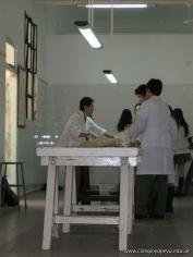 Visita a la Morgue 8