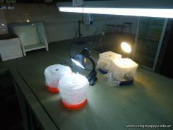 5to grado Experimentando en el Laboratorio 11