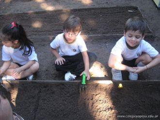 Jardin de 5 en la Huerta 43