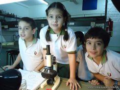 Observacion en Microscopio 10