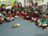 Preparativos y Festejos por el Dia del Animal 106