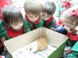 Preparativos y Festejos por el Dia del Animal 113