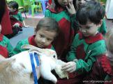 Preparativos y Festejos por el Dia del Animal 74