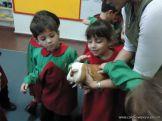 Preparativos y Festejos por el Dia del Animal 96