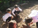 1er grado Trabajando en la Huerta 3