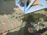 3er grado visito Aguas de Corrientes 70