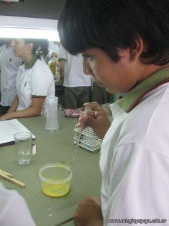 Experiencias sobre Biomoleculas 36