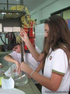Experiencias sobre Biomoleculas 37