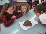 Un meteorito visito 3er grado 7