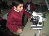 Observando Celulas 5
