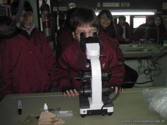 Observando Celulas 9