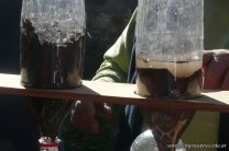 Visita a la Granja La Pituca 73