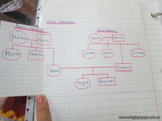 Arbol Genealogico 20
