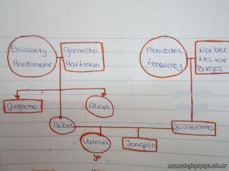 Arbol Genealogico 51