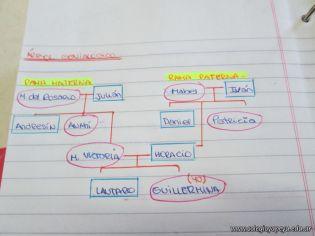 Arbol Genealogico 6