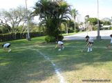 4to-rugby-hockey_78