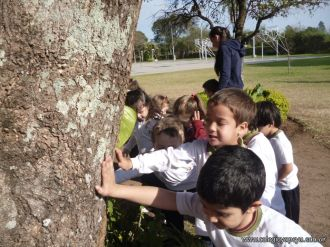 Reconociendo Arboles en el Campo Deportivo 1