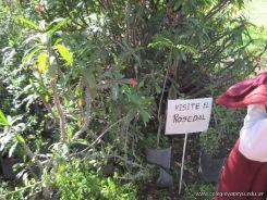 Visita al Jardin Botanico 21