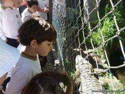 Visita al Zoologico de Salas de 3 21