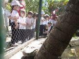 Visita al Zoologico de Salas de 3 26