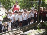 Visita al Zoologico de Salas de 3 27