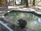 Visita al Zoologico de Salas de 3 29