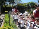 Visita al Zoologico de Salas de 3 42