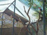 Visita al Zoologico de Salas de 3 47