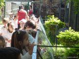 Visita al Zoologico de Salas de 3 48