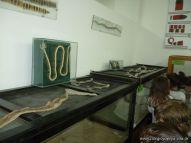 Visita al Zoologico de Salas de 3 69