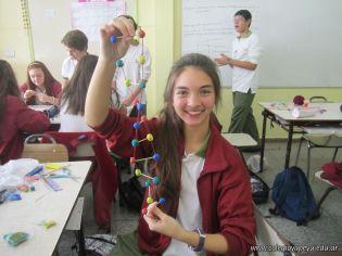 Estructura Espacial del ADN 26
