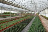 Visita a la Escuela de Jardineria Nro. 13 3