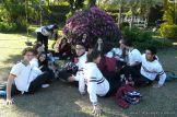 Dia del Arbol 2013 53