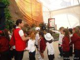 Dinosaurios en Salas de 5 19