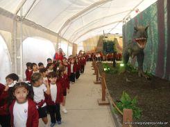 Dinosaurios en Salas de 5 22