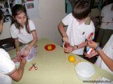 Preparamos Mermelada de Frutilla 27