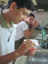 Sustancias Quimicas 4