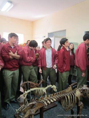 Visitamos la Facultad de Veterinaria 4
