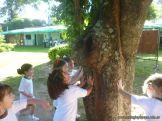 Explorando el Campo Deportivo 2