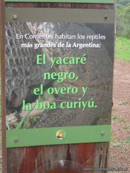 Centro de Conservacion 11