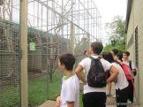 Centro de Conservacion 15