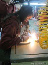Cultivo de Microorganismos 21