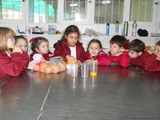 Jugo de Naranjas en Salas de 5 25