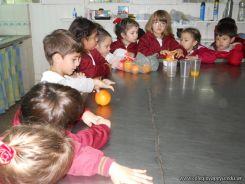 Jugo de Naranjas en Salas de 5 26
