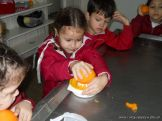 Jugo de Naranjas en Salas de 5 30
