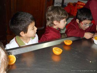 Jugo de Naranjas en Salas de 5 49